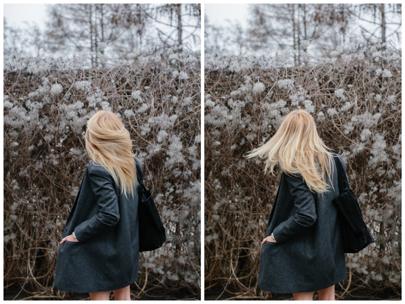 _E1A0617_Fotor_Collage